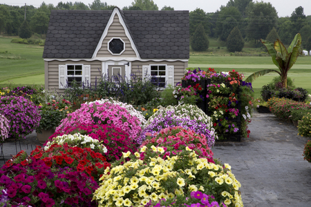 colo: Beautiful garden with garden house and flowers