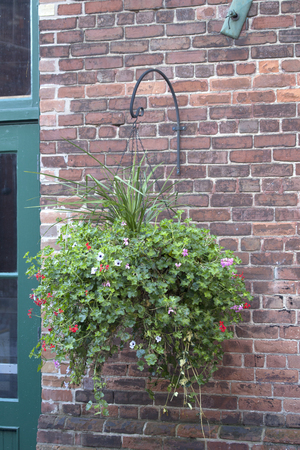 Hanging Basket and Brick Wall Stock Photo