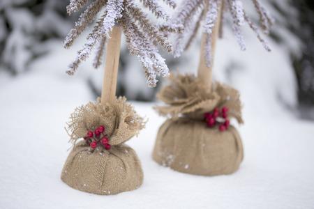 Christmas Trees in Burlap Stockfoto