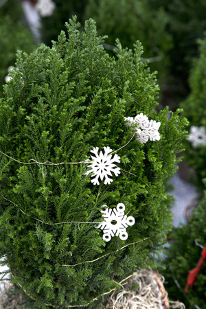 Miniature Christmas Tree with Snowflake Garland