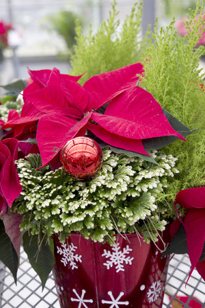 Decorative Christmas Container