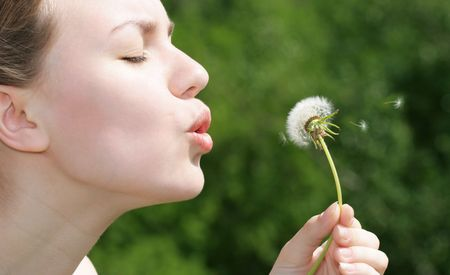 blowball: Profile of girl with blowball, background is out of focus