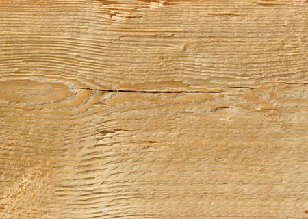 Rough real wooden texture close up