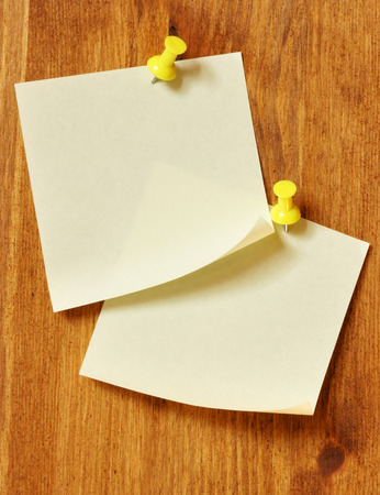 Two blank note papers attached to a wooden wall photo