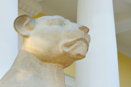 portico: Muzzle of old marble lion close up