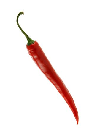 pungent: Red hot chili pepper isolated over white background
