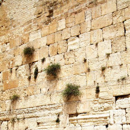 lamentation: Close up of Western wall. Jerusalem. Israel.