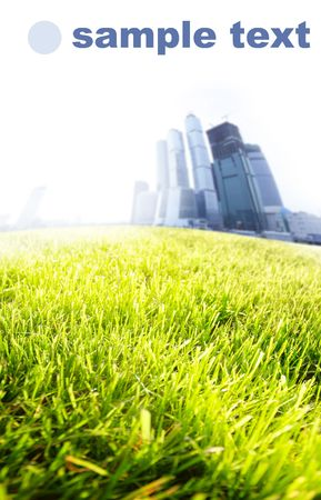 far off: Green grass field and city far off. Focus on the foreground!!! Shallow DOF!!!