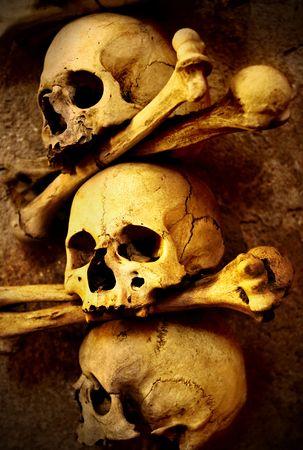 Skulls and bones close up sepia toned Stock Photo - 5804204