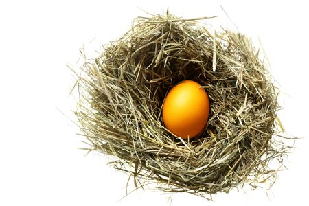 Nest with easter egg isolated over white background Stock Photo - 6540656