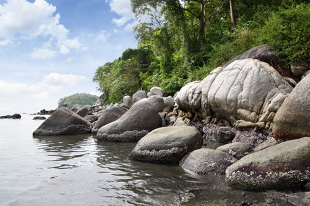 woody bay: Stones near Kata Beach, Phuket island, Thailand Stock Photo