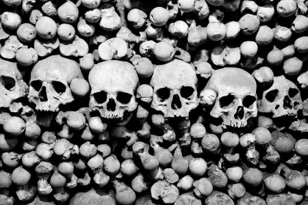 beenderige: Schedels en botten. Zwart-wit beeld. Stockfoto