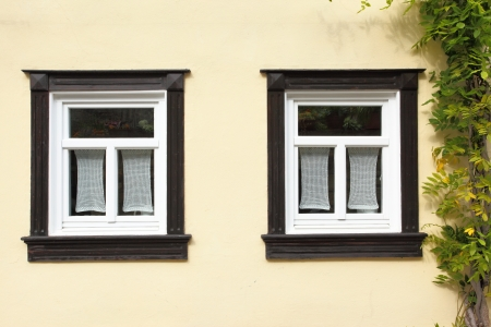 comfortableness: Windows of old house with ivy, Germany Stock Photo