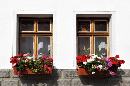 comfortableness: Window of old house with flowers, Germany