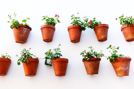comfortableness: Wall with flower pots. Andalusia, Spain Stock Photo