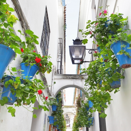Narrow street with flowers in Cordoba (Calleja de las Flores) 免版税图像