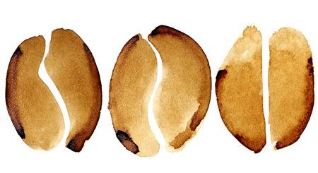 chicchi di caff?: Chicchi di caffè isolati su sfondo bianco dipinte con vero caffè