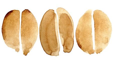 chicchi di caff?: Set di chicchi di caffè isolato su sfondo bianco dipinto in vero caffè