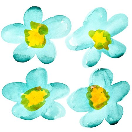 pictured: Watercolor flowers isolated over the white background