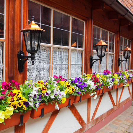 house windows: Windows of old house with flowers in flowerpots, Nurnberg, Germany