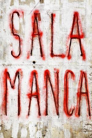 graffito: Salamanca - Urban graffiti on a wall, Spain