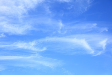 fleecy: Light fleecy clouds in the sky, may be used as background