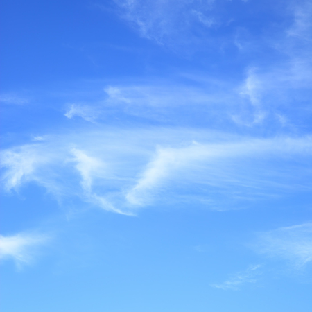 fleecy: Fleecy clouds in blue sky, may be used as abstract background