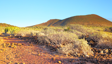 Panoramic view of desert area on Tenerife Island, Canaries