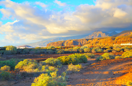 Beautiful landscape of desert area in Tenerife, Canary Islands