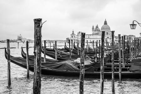 Gondolas and Santa Maria della Salute church in Venice, Italy. Black and white