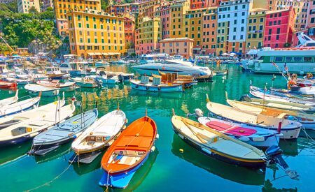 Colorful buildings and fishing boats in the port of Camogli on sunny summer day, Genoa, Italy