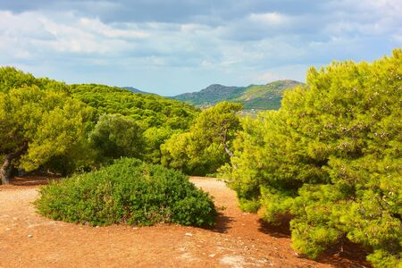 Panoramic view of Aegina Island with coniferous woods, Agia Marina, Saronic Islands, Greece - Landscape