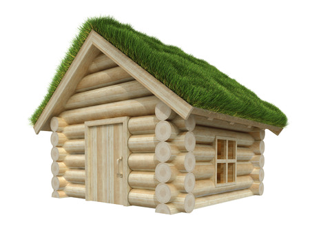 grassy: Wooden house isolated on white. Grassy roof. 3D render