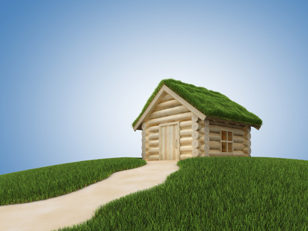 grassy: Pathway to wooden house with grassy roof. 3D render