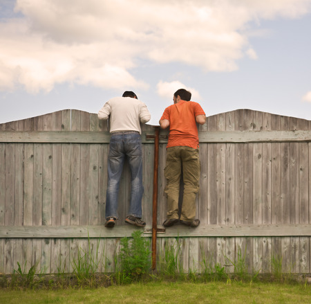 peeking: Photo of two boys on the fence