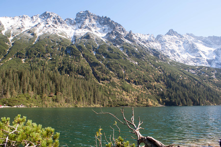 oko: Beautiful Morskie Oko green water alpine lake on sunny day, Tatry Mountains, Poland