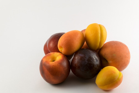 plums, peaches and apricots on white background.