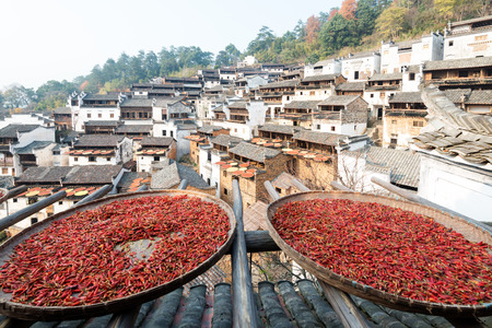 cultivating: wuyuan,the most beautiful village in China Stock Photo