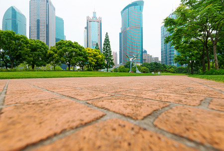 city park with modern building background in shanghai