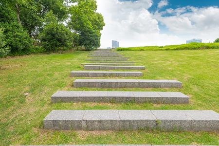 分析観点ビュー内の芝生の広場に石の通路パターン