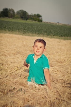 Happy boy in the field of wheat on sunny day Stock Photo - 13991615