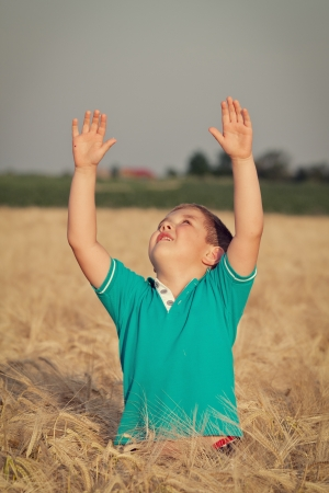 Happy boy in the field of wheat on sunny day Stock Photo - 13991626