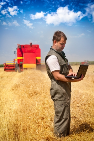 agricultor: Farmer c�lculo de ganancia en el campo Foto de archivo