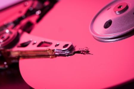 hard disk drive pink color red light photo