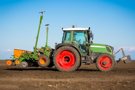 Tractor in the field sow photo