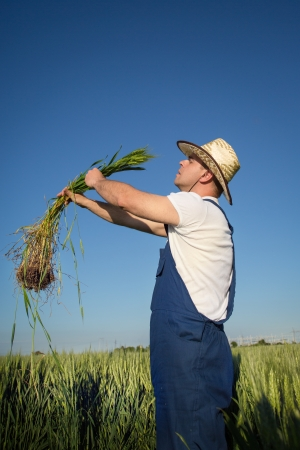 farmer in field photo