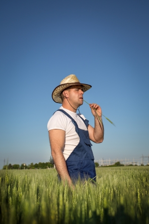 farmer in field Stock Photo - 19662152