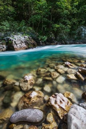 tara: Tara river canyon