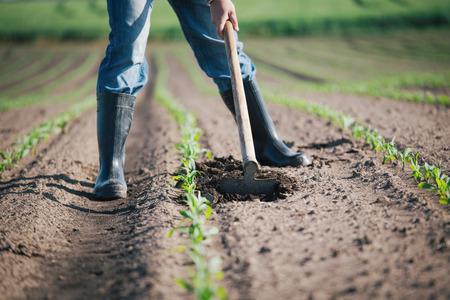 農業での肉体労働