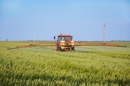 Tractor spraying wheat field with sprayer photo